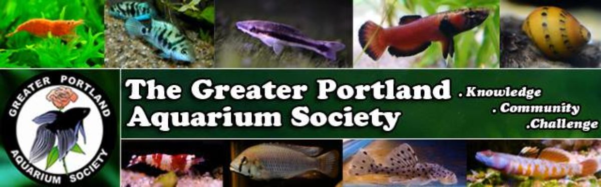 The Greater Portland Aquarium Society